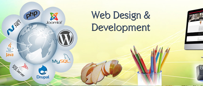 Website Designing Company Rohini Pitampura In Delhi